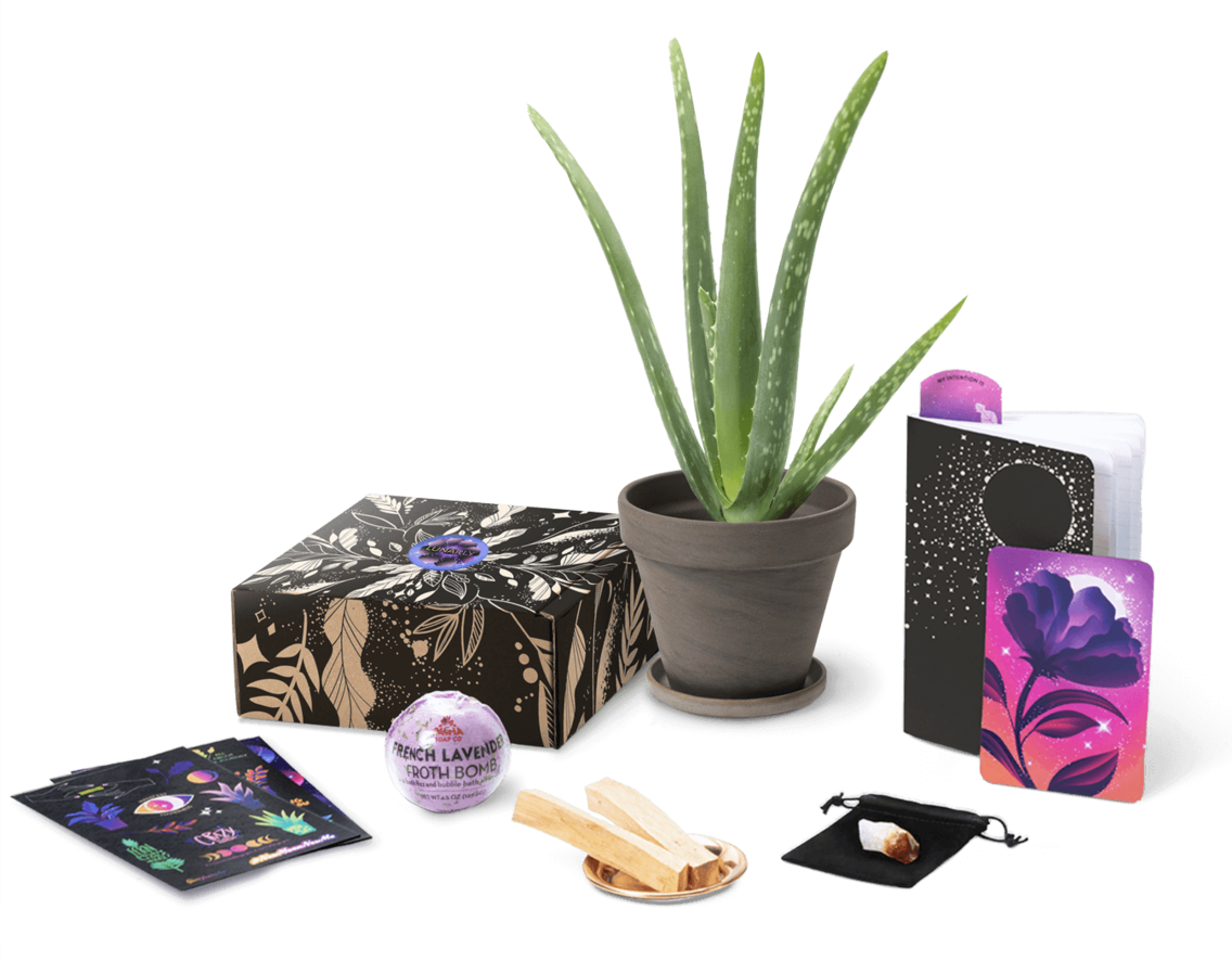 Some months include a candle instead of a plant, but the fun extras (like lip balm, bath bombs, incense, and journals) come no matter what. Get a subscription from Lunarly for $40 a month.