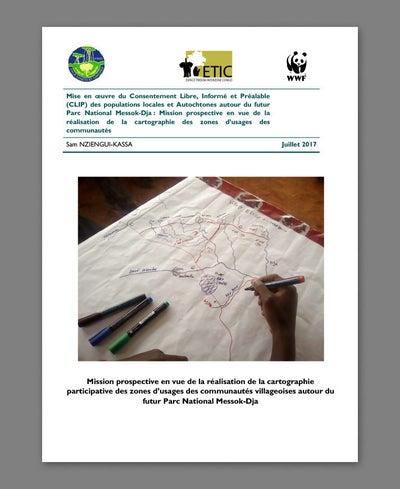 The 2017 report prepared by Sam Nziengui-Kassa.