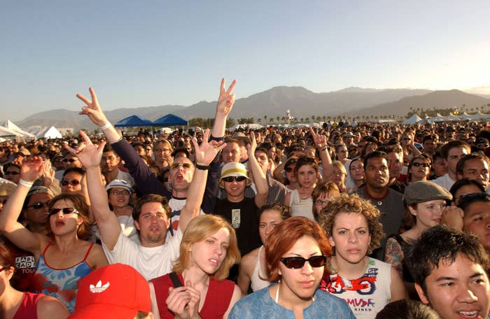 Fans in front of the main stage cheer for the Strokes as they perform on April 28, 2002.
