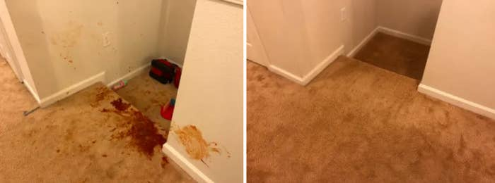 A photo of a stained carpet next to another photo of the same carpet with the stain removed