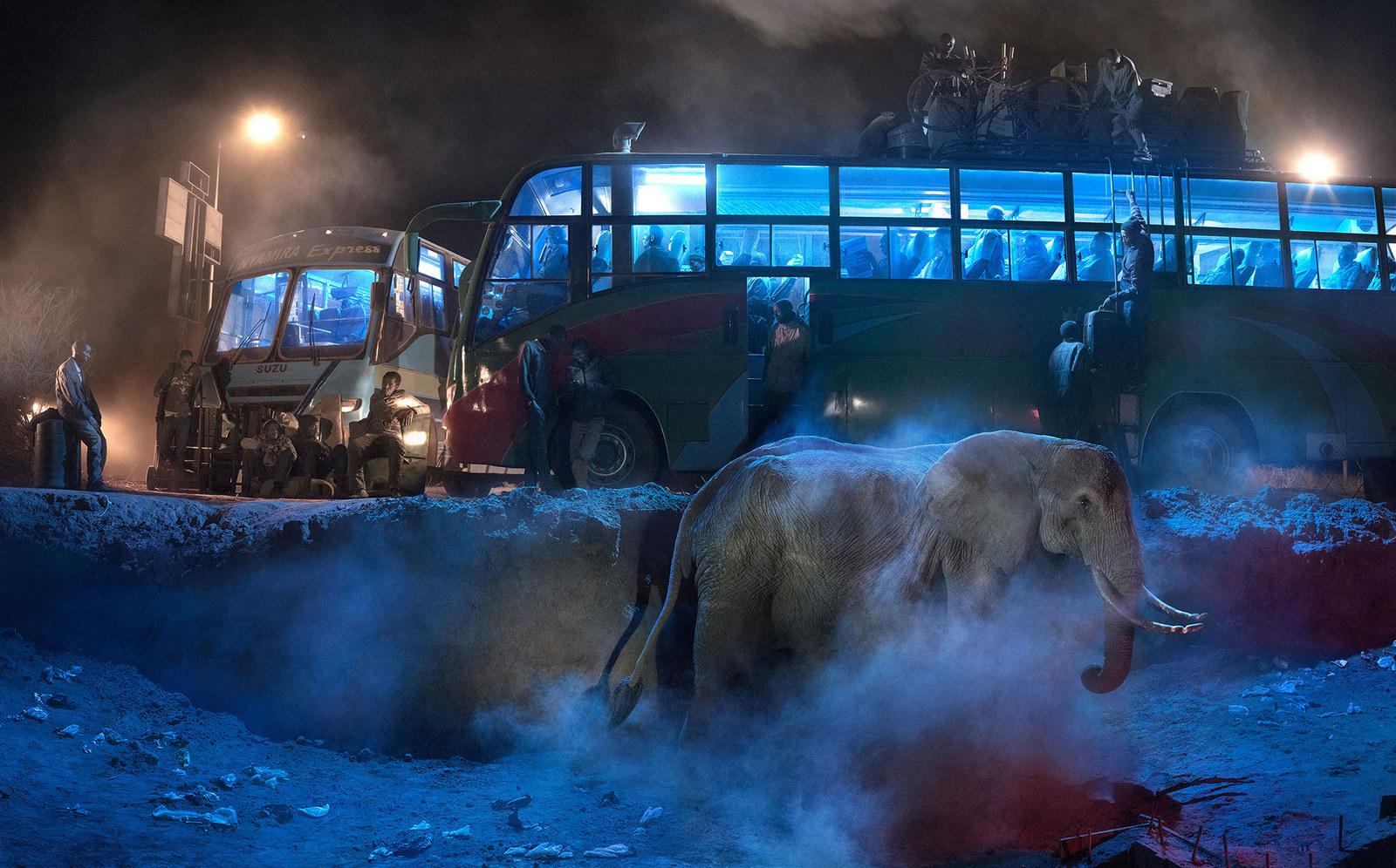 These Haunting Photos Capture The Vanishing Wildlife Of Africa