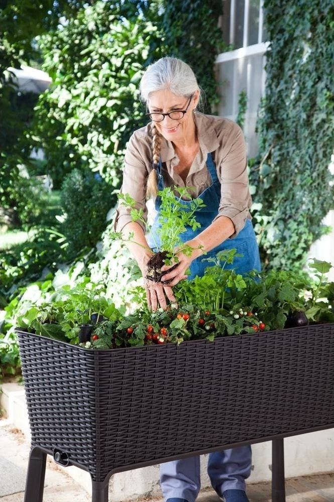 32 Useful Gardening Products Youll Wish Youd Known About Sooner