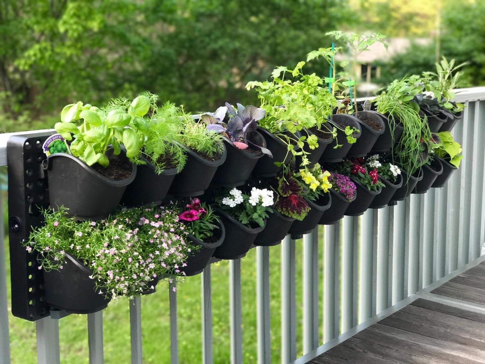 Two lines of about 15 plant pots on one long rectangle that's attached to a rail on an outdoor porch