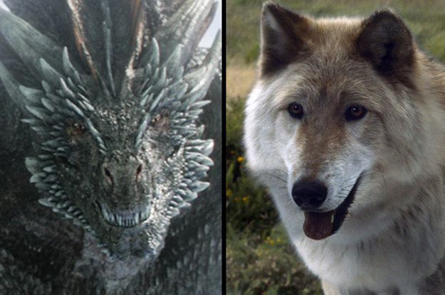 Which Game Of Thrones Dragon And Direwolf Combination Are You?