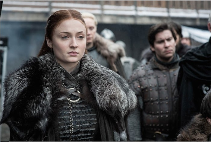 Sansa's quick-thinking has helped her in many situations, as well as her powerful demeanor. A tad competitive, she earned her way to being Lady of Winterfell. Sansa is not scared to back down, even to the Queen of Dragons.
