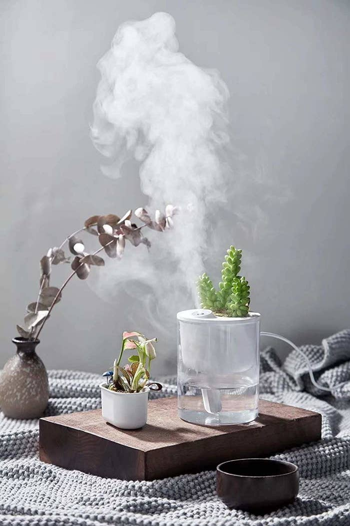 """This doesn't include the plant, so be sure to grab some mini succulents if you want the full look. Promising review: """"My regular sized humidifier is a huge hassle to clean. I wanted one I could keep in my office but wouldn't break my back scrubbing every day. This looked perfect, so I went ahead and ordered it. It's about the size of a pint of ice cream but don't let the size fool you, this produces an incredible amount of steam! And it is SO cute! It's exactly what I needed and I'd recommended it to others."""" —DanaGet it from Amazon for $22.99."""