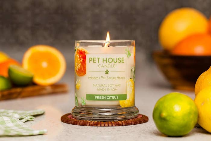 The Fresh Citrus scented candle burning on a table surrounded by limes, lemons, and oranges