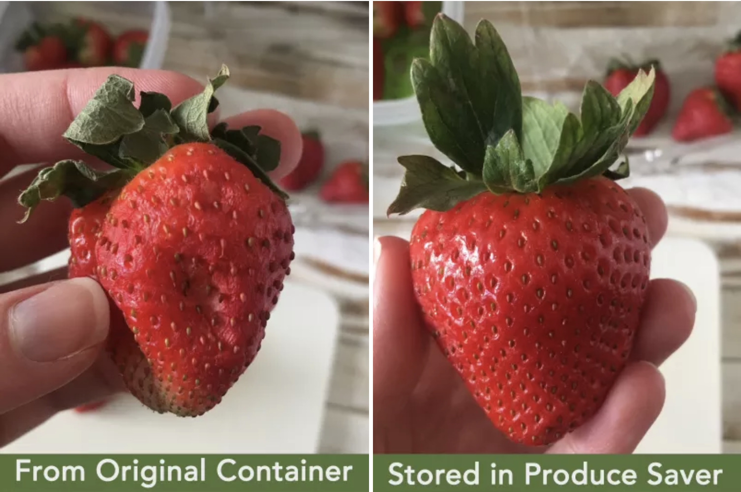 A BuzzFeed Shopping reviewer's image comparing a strawberry kept fresh in the Rubbermaid container with one kept in the original clamshell (significantly soft and mushy)