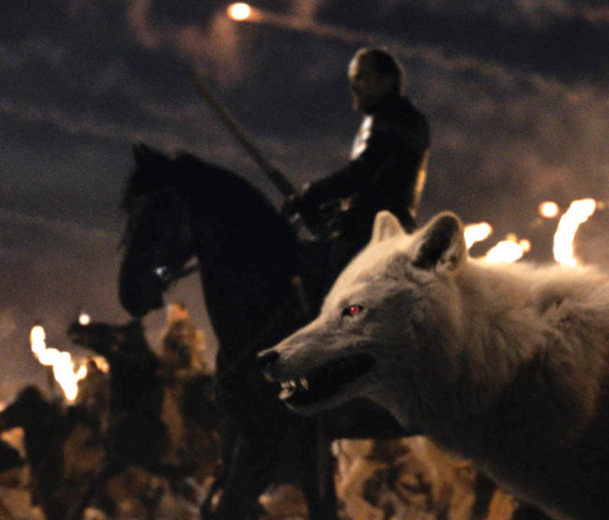 Birds aren't the only thing Bran can warg into – we saw him warg into Summer, his direwolf, in the past, as well as Hodor. Some fans have suggested Bran actually warged into Ghost and/or the dragons during the Battle of Winterfell. This would be cool, but it's another theory for which we have zero on-screen evidence.