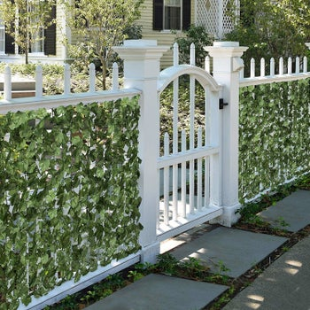 front yard with a gate and the ivy wrapped around the fencing to obscure what's behind it