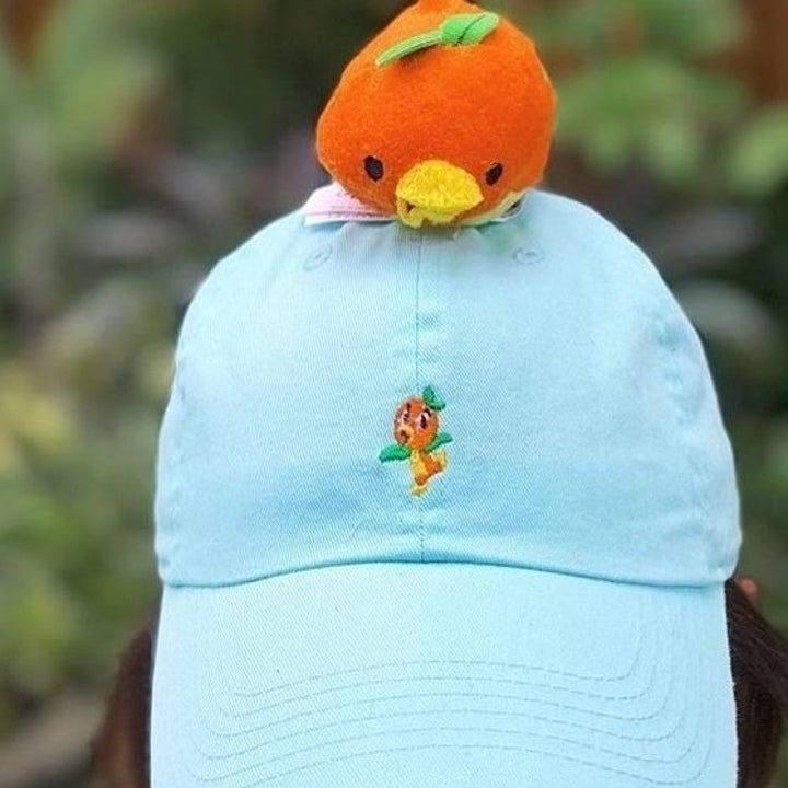 a light blue baseball cap with an orange bird embroidered on the front/middle