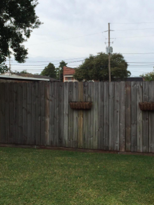reviewer pic of worn, gray looking wood fence from age