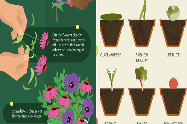 11 Gardening Cheat Sheets