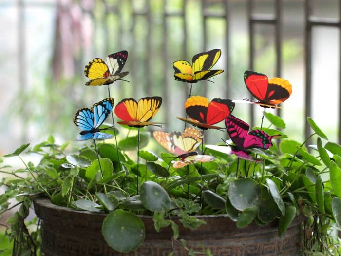 """Promising review: """"This is a excellent way to add a little 'pop' to your garden without going crazy. Inexpensive and you get a lot of butterflies with many different colors to choose from to accent your different color flowers. Sometimes by picking the right color against a certain flower, the butterfly comes to life and looks real!"""" —Thomas P. Get a pack of 25 from Amazon for $1.89 (available on Prime from other sellers)."""