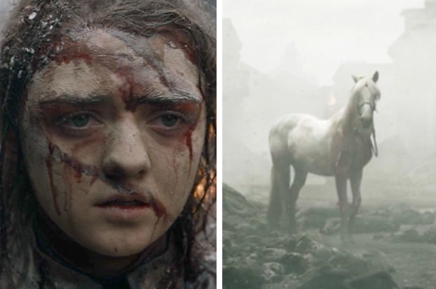 """Arya's Horse On """"Game Of Thrones"""" Actually Has Great ..."""