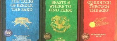 For Less Than $25 You Can Have Your Very Own Hogwarts Library