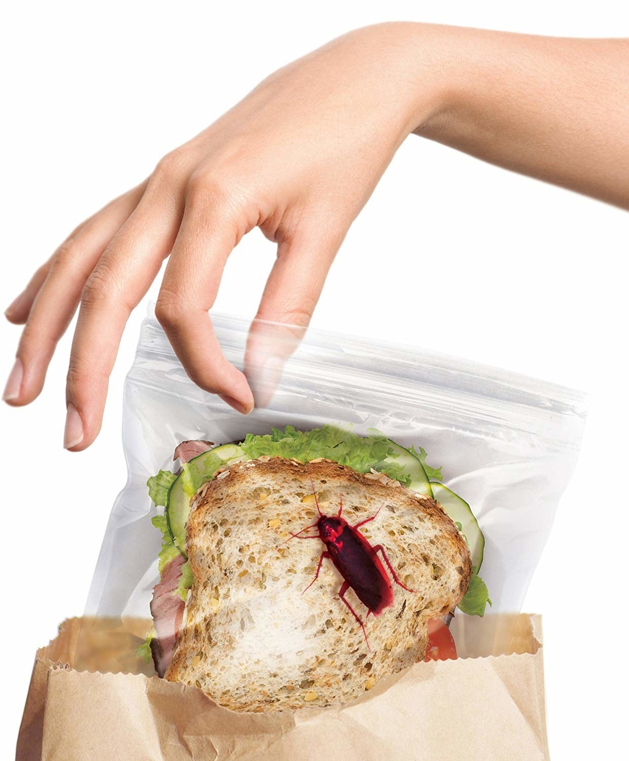 plastic sandwich bag with a cockroach image on it