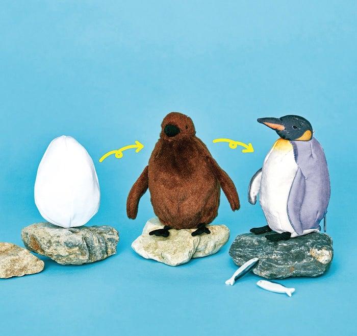 オウサマペンギン3変化ぬいぐるみ