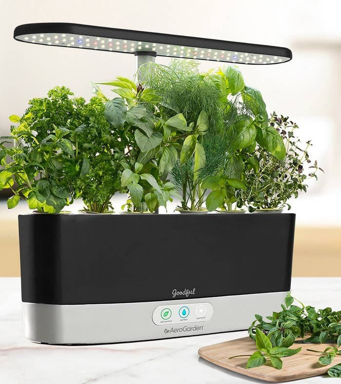 black electric planter with herbs growing in it under LED lights