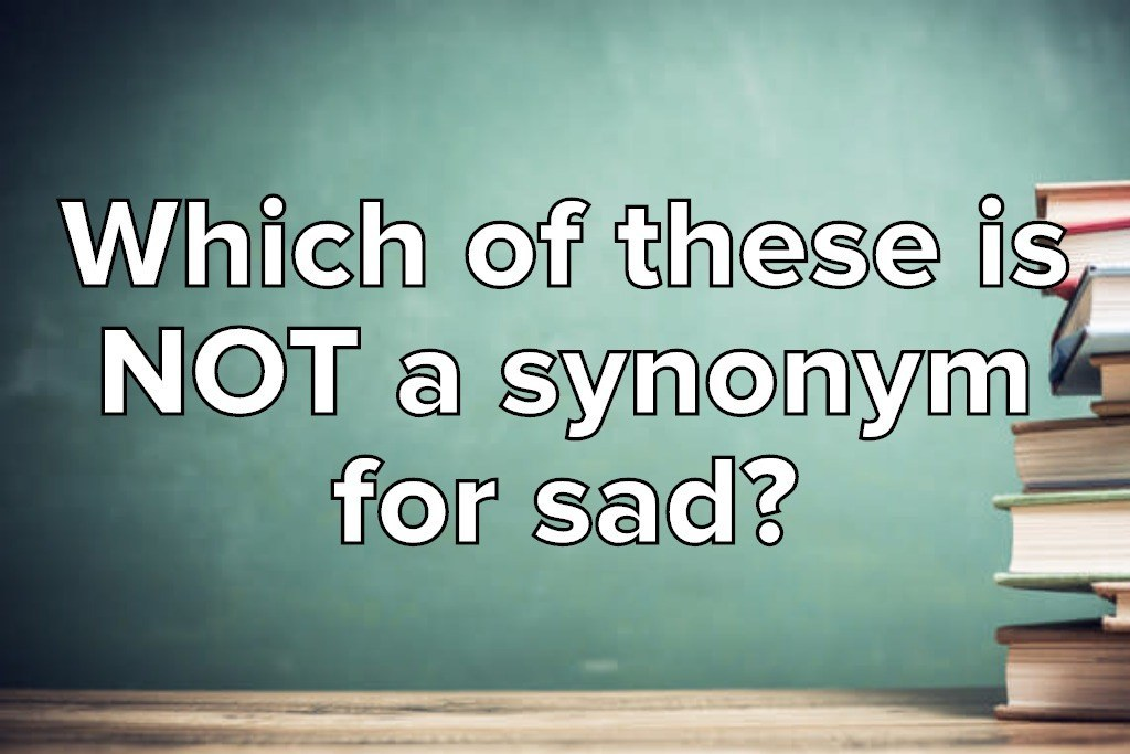 Only 45% Of Americans Can Pass This Synonym Vocabulary Test
