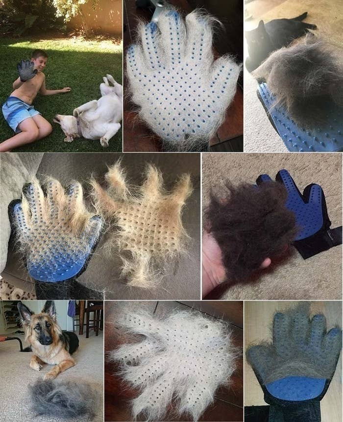 a series of images showing pet hair on the glove