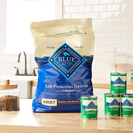 "Promising review: ""This is the best food. Nutritious and delicious, at least that's what all six of my dogs say!"" —wvwitchPrice: $15.98+ for the dry food (available in four sizes) and $25.99 for a 12 cans of wet food"