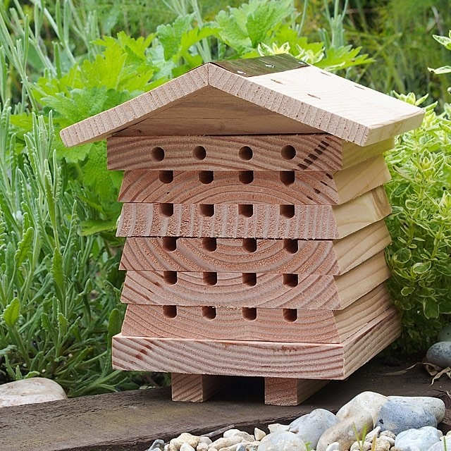Wooden bee condo showcasing the front with multiple holes for the bees