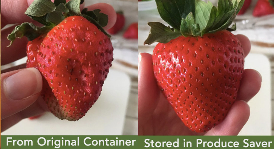 "A split photo: on the left, a wrinkled strawberry labeled ""From Original Container"" and on the right, a fresh-looking strawberry labeled ""Stored in Produce Saver."""