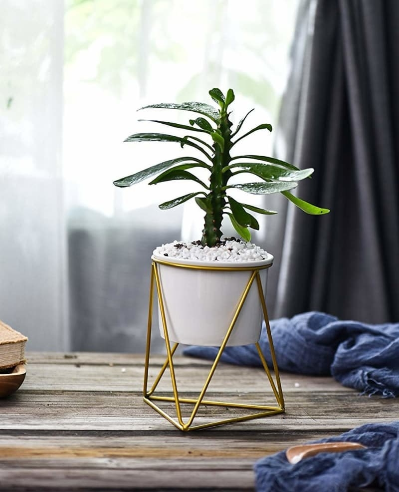 White pot with a stand with gold triangles