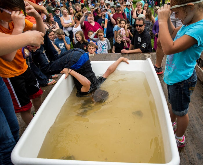 Members of the community of Sitka, Alaska, participate in a fish-head bobbing contest at the Sitka Seafood Festival.