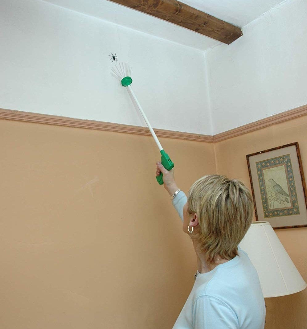 A person using the long-handled catcher with soft bristles at the end to catch a spider