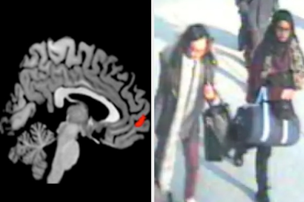 The First Ever Brain Scans Of Jihadists Show How Radicalisation Alters The Mind