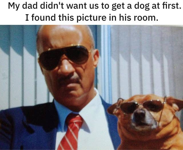 Awe Inspiring 19 Dads Who Didnt Want A Dog And Came Around Real Fast Creativecarmelina Interior Chair Design Creativecarmelinacom