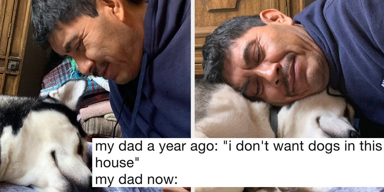 19 Reluctant Dog Dads Who Now Love Their Dog More Than Their Own Kids