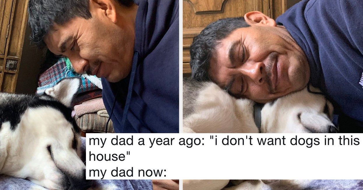19 Dads Who Didn't Want A Dog And Came Around Real Fast
