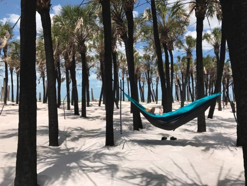 Reviewer laying in the hammock reading a book in a tropical looking setting