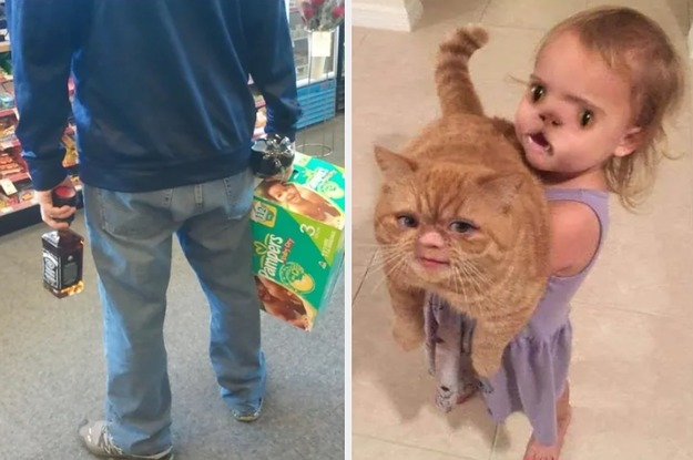 Küçük dick lanet büyük kedi