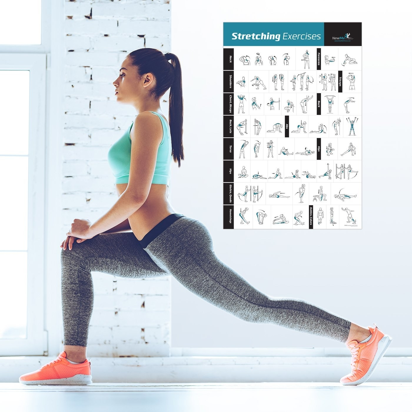 A model stretching their legs with a graphic of the exercises in front of them. The poster has eight categories with several stretches displayed in each.