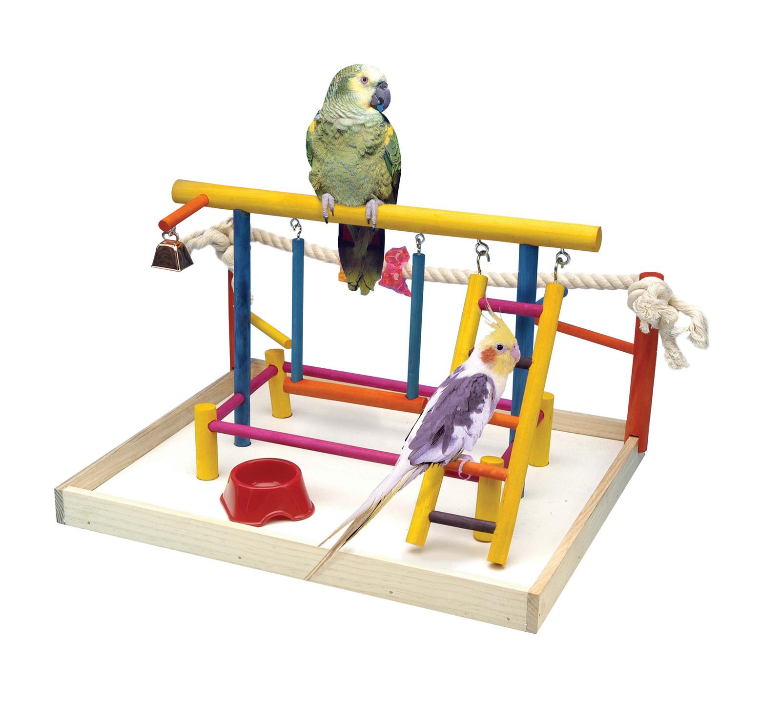 Игрушки для попугая картинки
