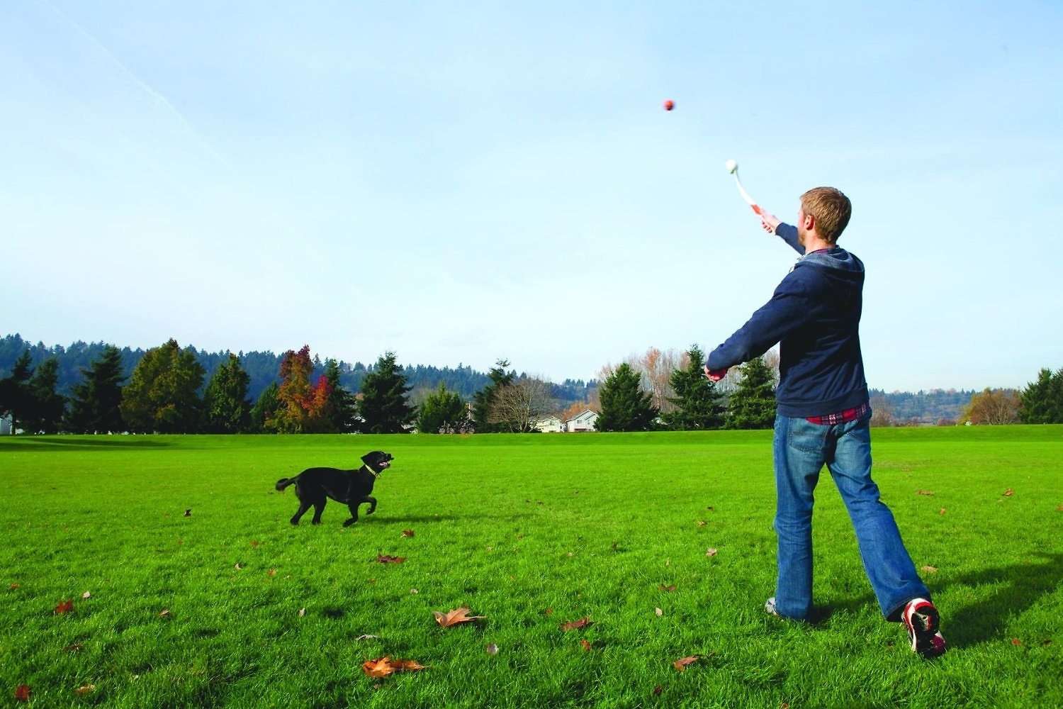 A person launching their dog's ball considerably farther than a traditional throw with the help of the arm-length wand