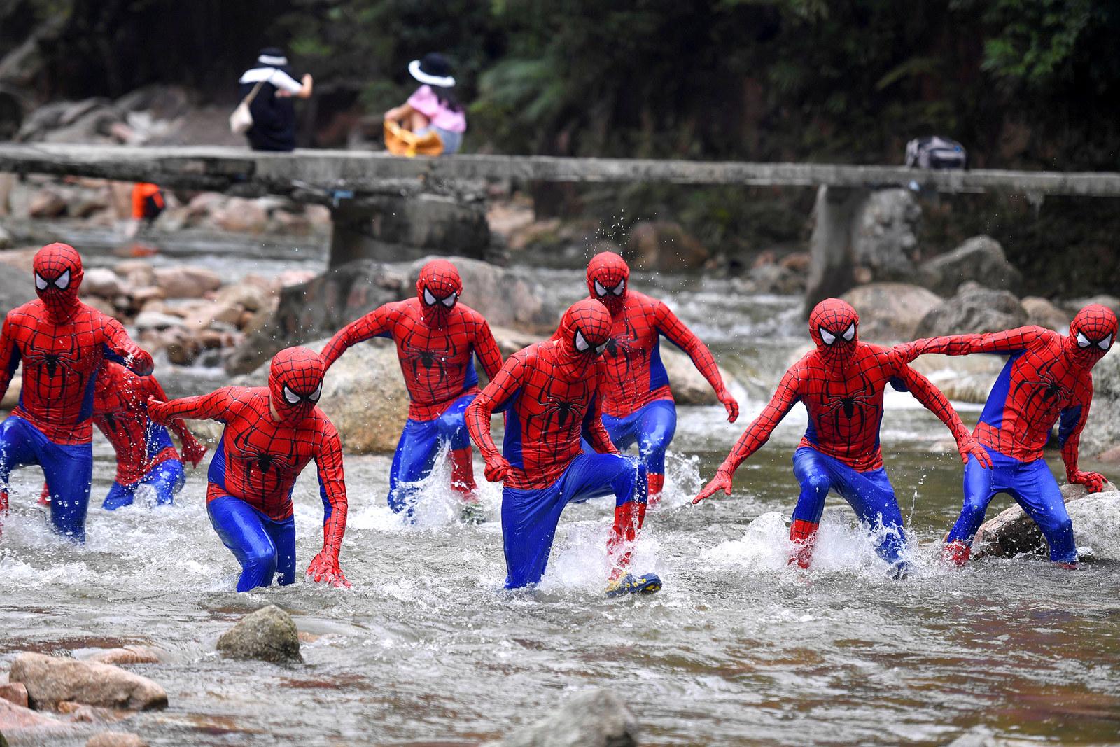 Открытки днем, картинки приколы человека паука