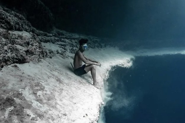 18 Insanely Creepy Things People Have Come Face To Face With While Swimming Underwater