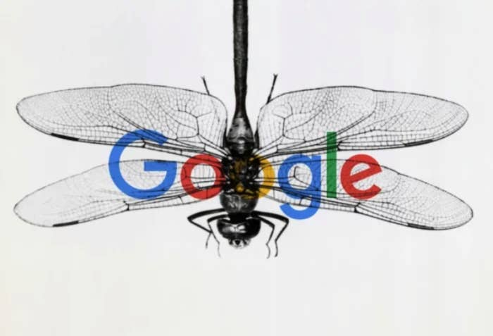 "A Google VP Told The US Senate The Company Has ""Terminated"" The Chinese Search App Dragonfly"