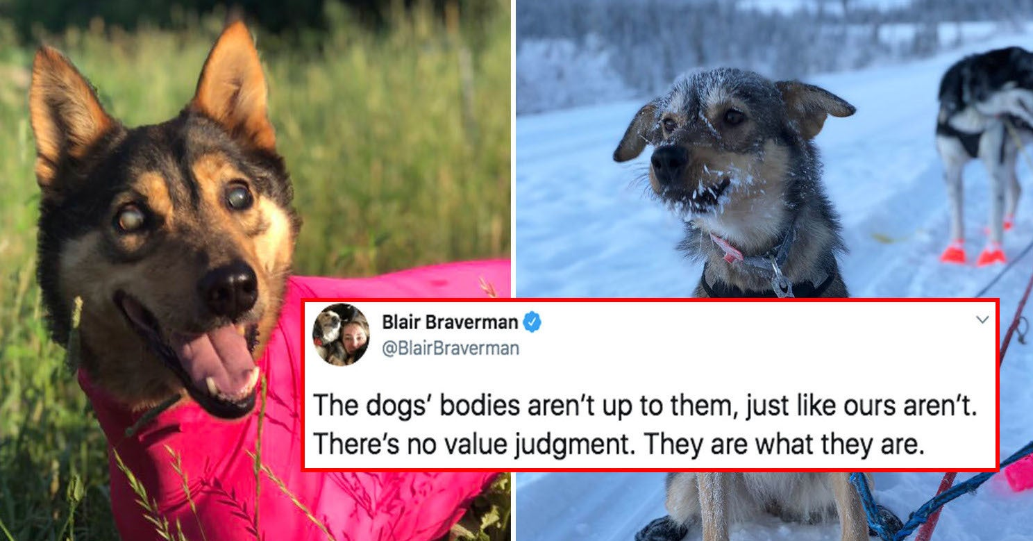 This Woman Shared What Her Sled Dog Team Taught Her About Body Positivity, And It's Perfect