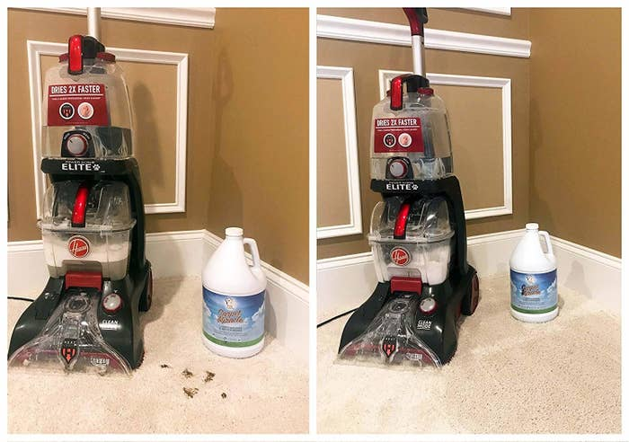 This Carpet Cleaner's Before And After