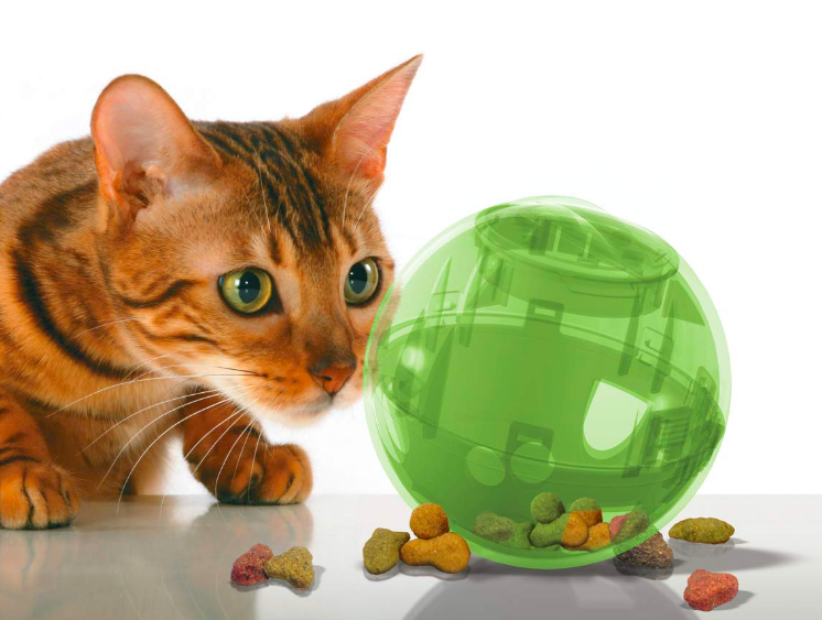 Cat peeking at treat-filled plastic ball. It has one hole where the treats come out if rolled correctly.