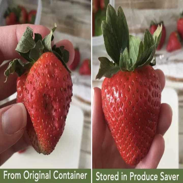 """Side-by-side image of two strawberries: one looks old and wilted and has the words """"From Original Container"""" on it and the other is beautiful and fresh and has the words """"Stored in Produce Saver"""" on it"""