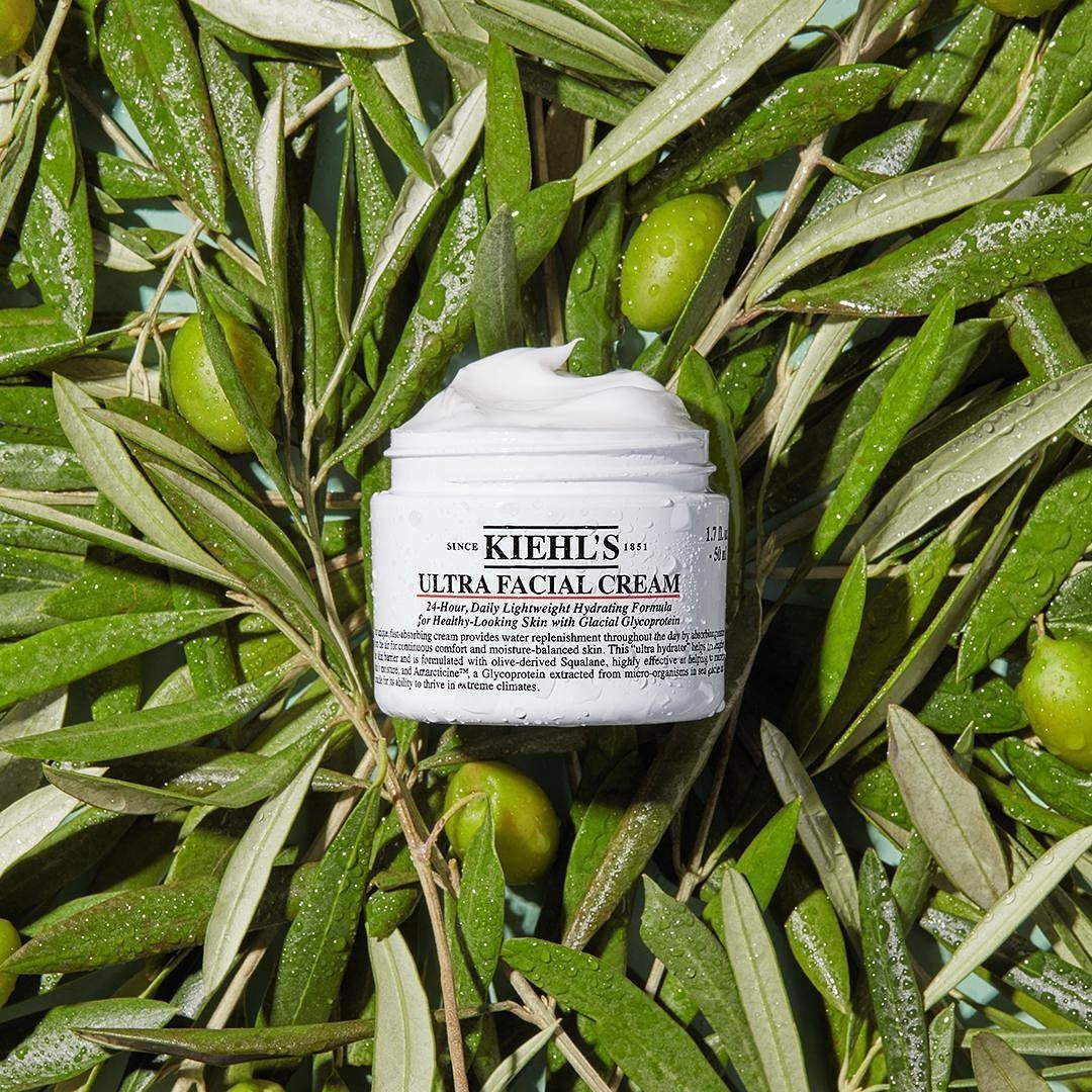 small tub of moisturizer on olive leaves and branches