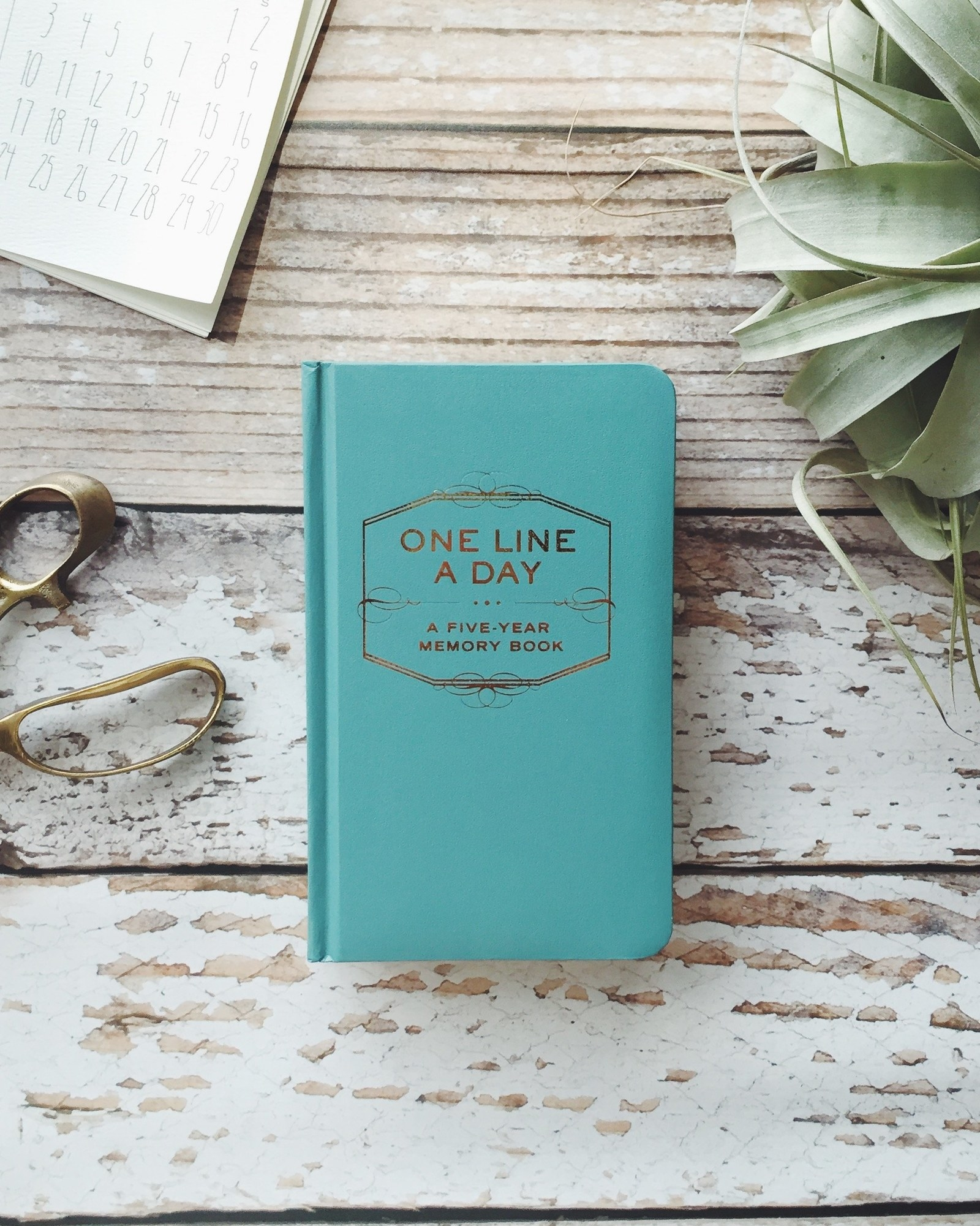 squishy covered journal that says one line a day