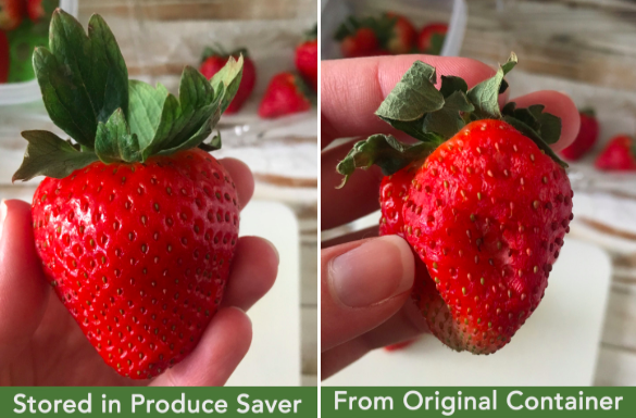 """left: ready-t-eat strawberry that says """"stored in produce saver"""" right: squishy strawberry that says """"from original container"""""""